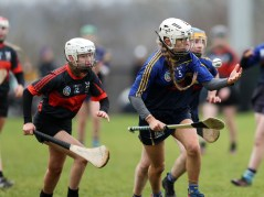 Camogie 17