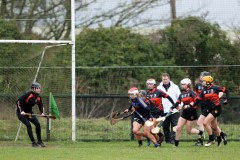 Camogie 8