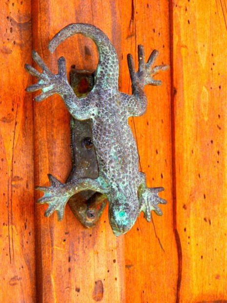 Salamander door knocker.