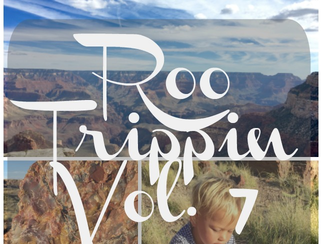 The Salt Stories: Roo Trippin Vol 7: A Grand Petrified Albuquerque