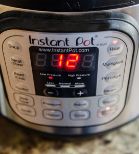 Instant Pot for Rice Pudding 12 minutes