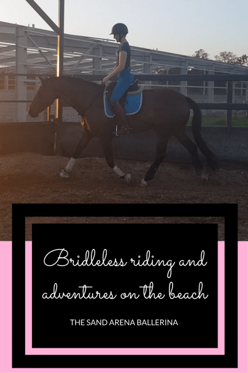 Bridleless riding and adventures on the beach (1)