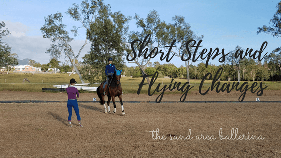 Short Steps and Flying changes