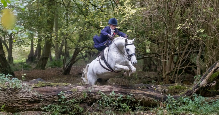 Side saddle with Katie Ockendon-Evans