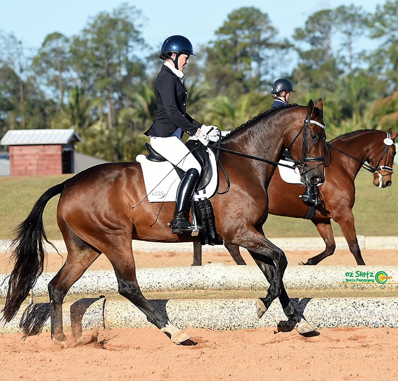 This photo of an uphill canter gives me validation that our training is heading in the right direction