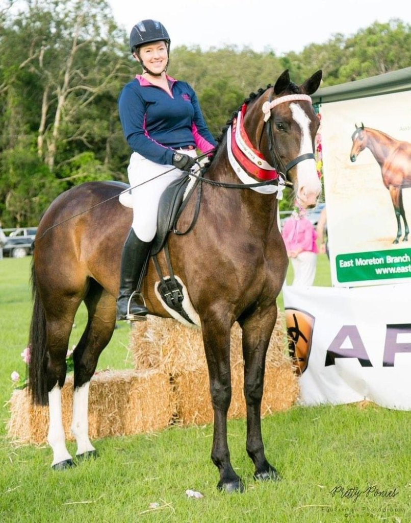 The stunning Harley aka Germaine who was destined for a career in dressage