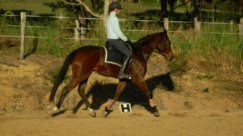 My second ride on Nonie back in 2010