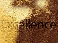 vision-values-excelence