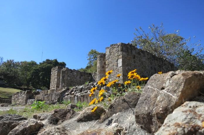 Tomb 7