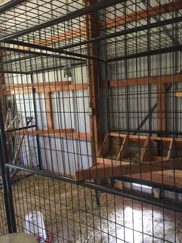 Chicken coup roosting bars
