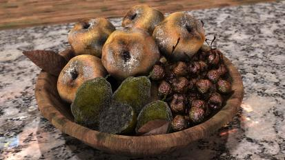moldyfruit