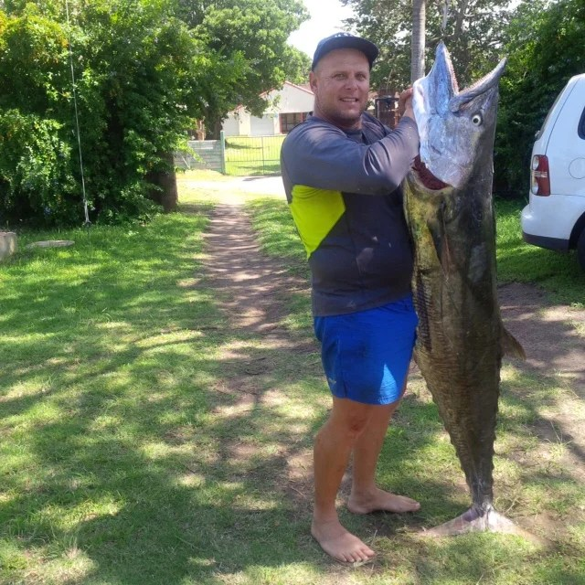 The photo does not do the fish of this size any justice at all. Although it does look like Roger could stick his entire head into that fish's mouth! It went 52kgs GUTTED!