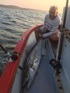 Koos Viviers on fire! Another couta taken on a MYDO Livebaitswimmer off Port Shepstone recently