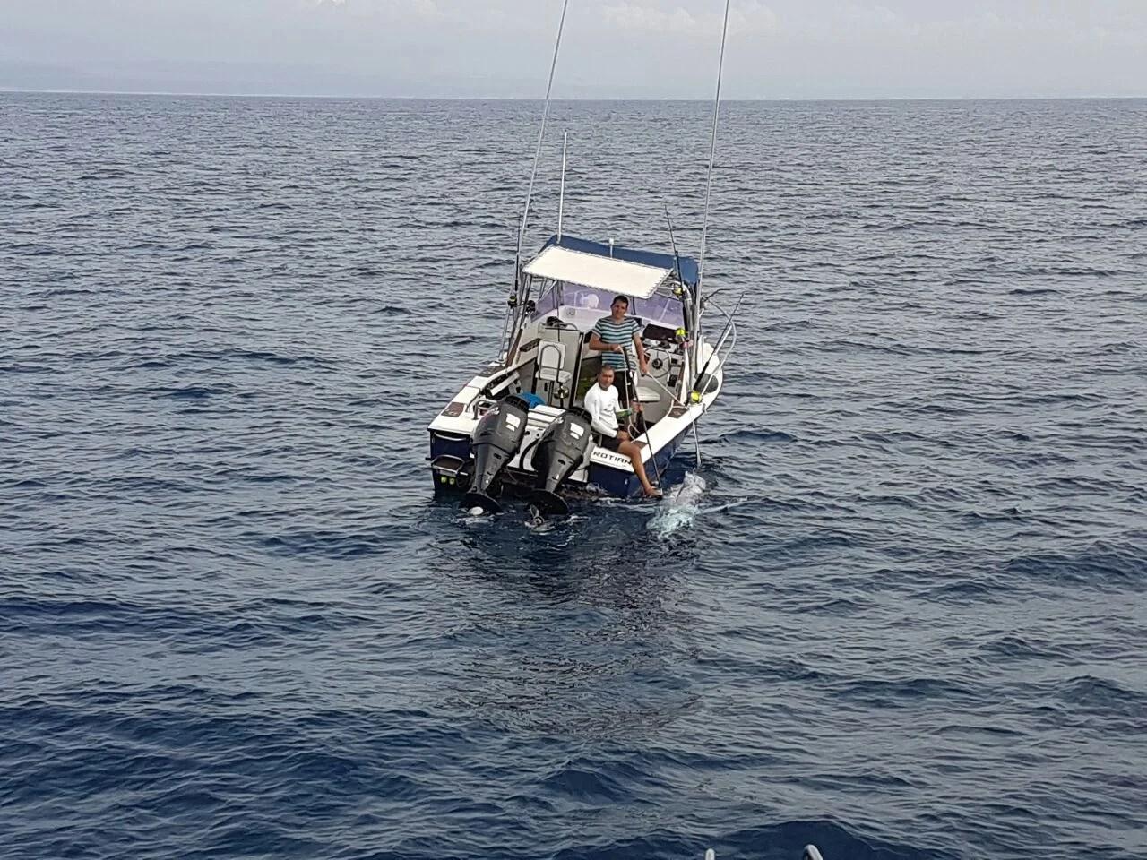 Angola Grander Blue Marlin