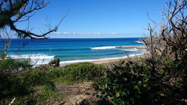 Surfing Mozambiques surprise left