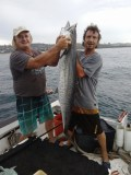 King mackerel off Southport, Natal Lower South Coast