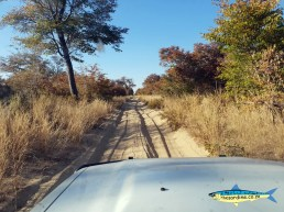 Serious 4WD work in Botswana