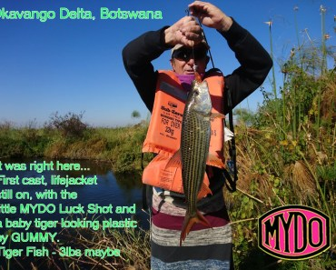Tigerfish caught first cast Mydo Luck Shot #1 doing the good work