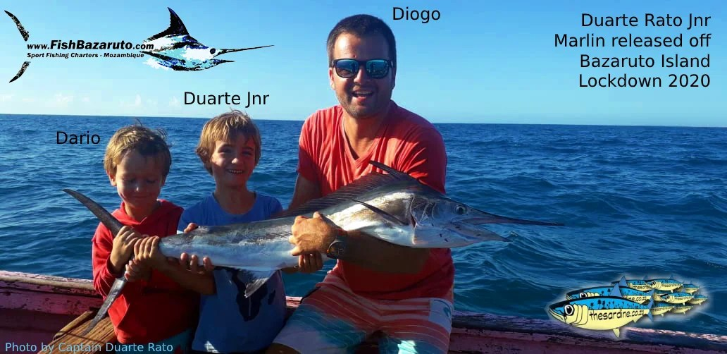 Duarte Jnr at 7 yrs old release his first Mozambique Marlin