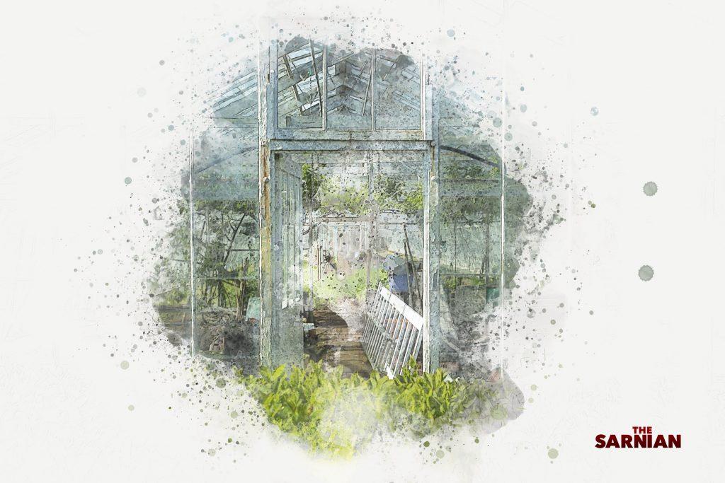 A Guernsey Greenhouse
