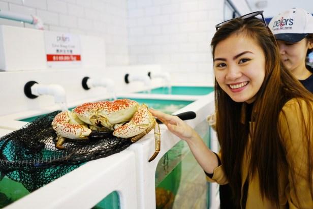 Huge crab!