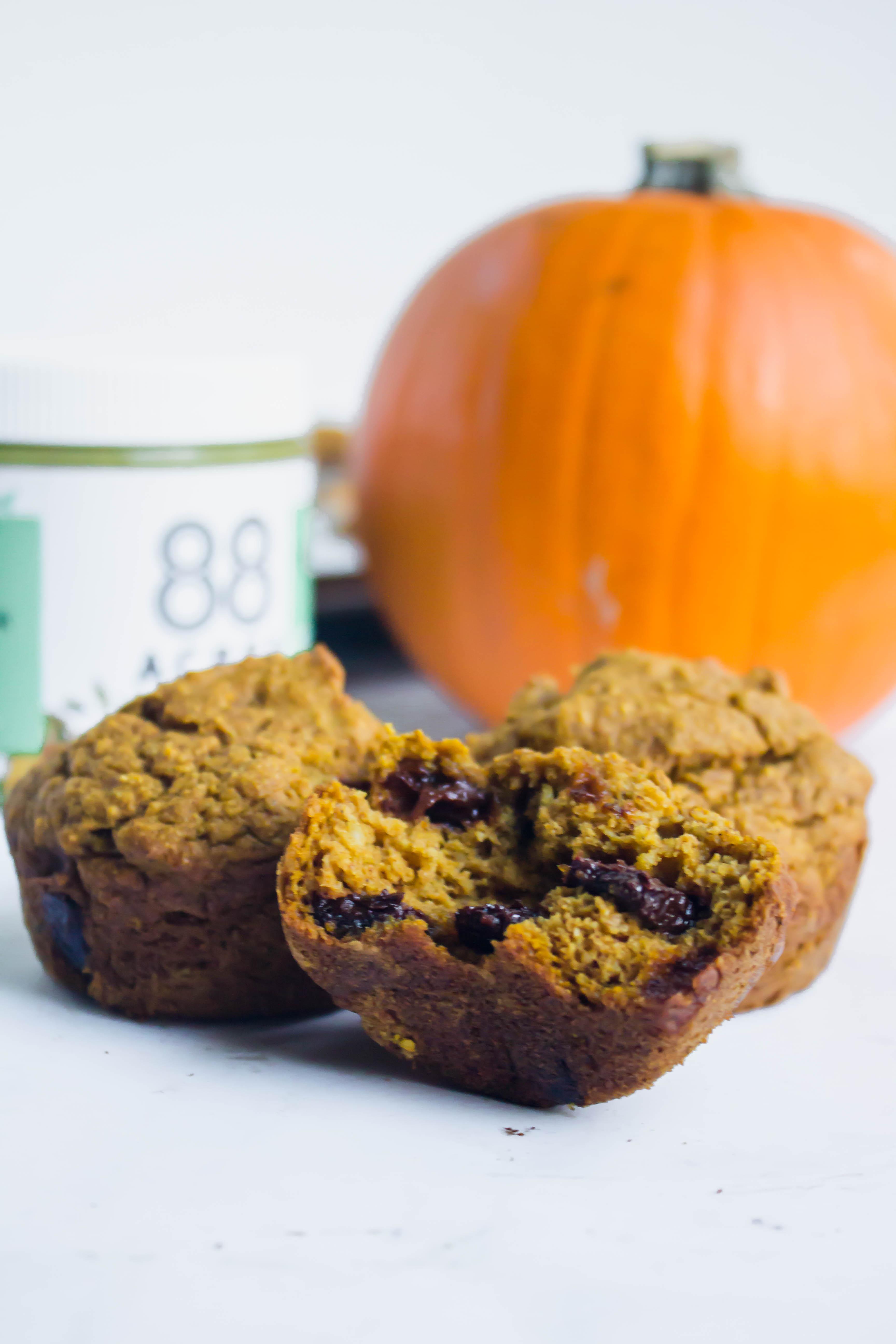 Pumpkin Chocolate Chunk Muffins