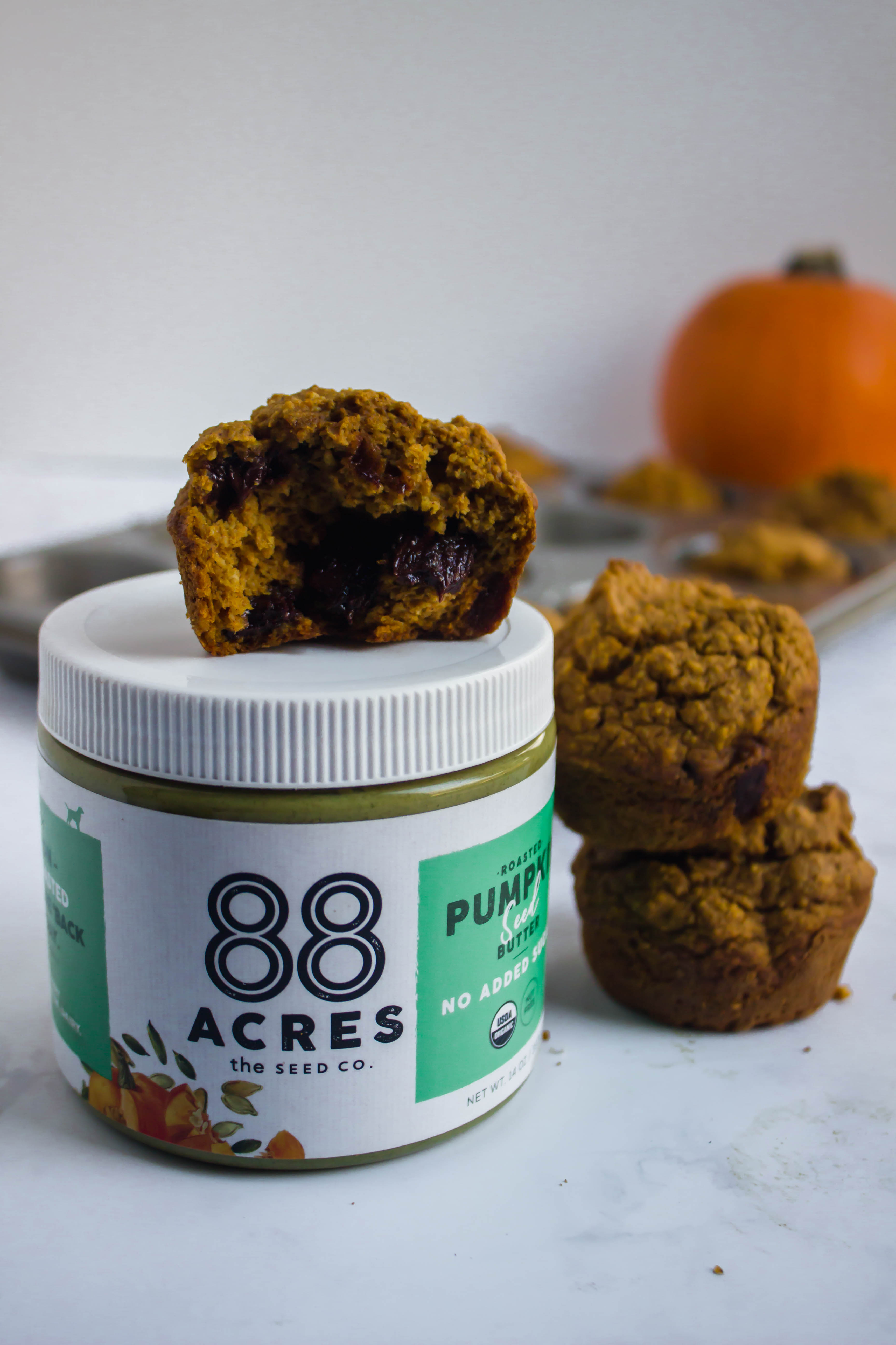 Pumpkin Chocolate Chunk Muffins