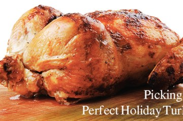 picking-the-perfect-holiday-turkey