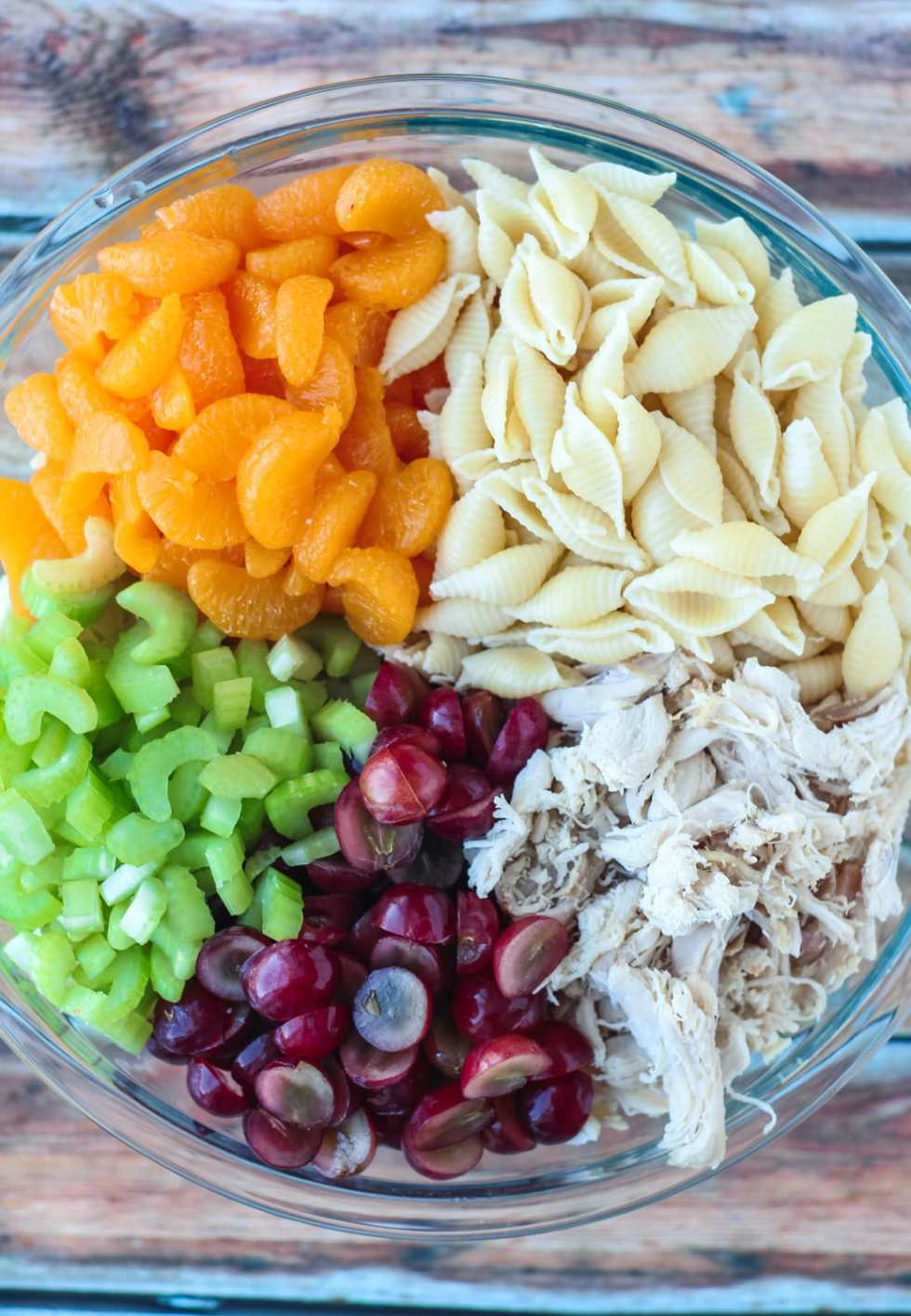 pasta salad with chicken and fruit