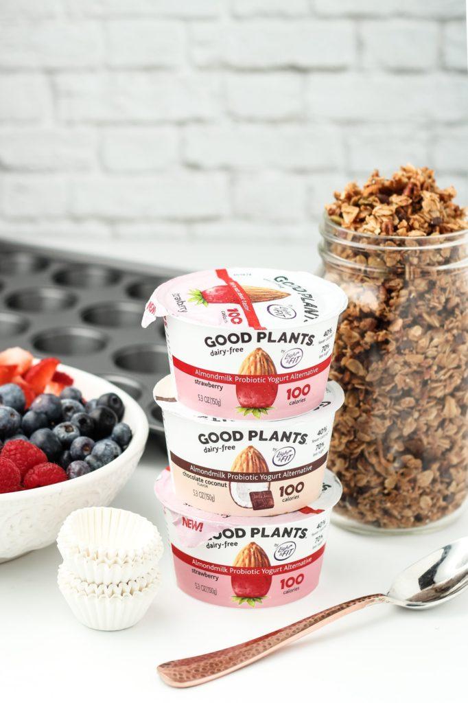 Vegan Frozen Yogurt Granola Bites
