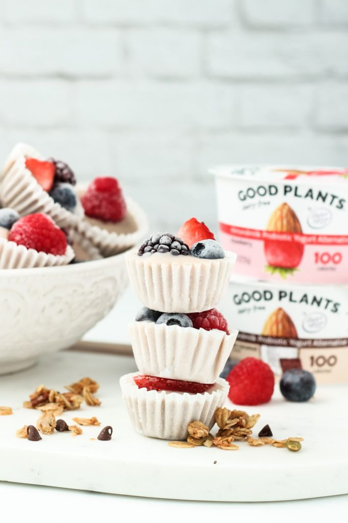 Vegan Frozen Yogurt Granola Bites