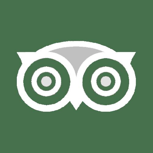 TripAdvisor Reviews on Maiale
