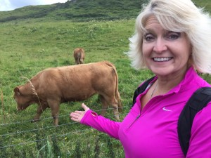mom and cows