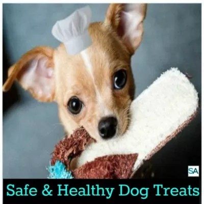 Safe And Healthy Dog Treats