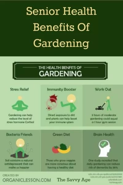 Infographic on the health benefits of gardening for seniors.
