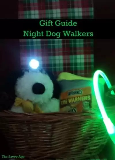 Gift basket with stuffed animal dog, dog walking products.