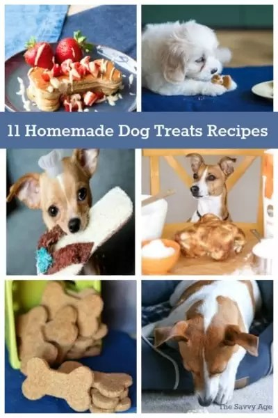 Collage of dog photos and dog treats.