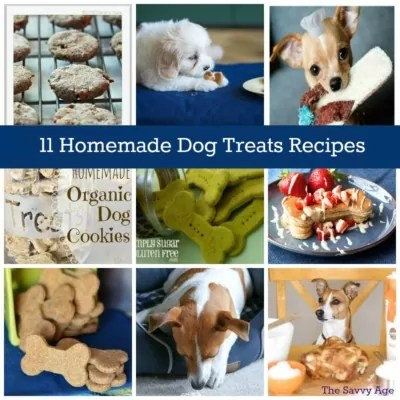 WOOF!  Healthy & Homemade Dog Treats Recipes