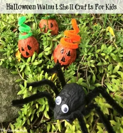 Cute Halloween Walnut Shell Crafts For Kids