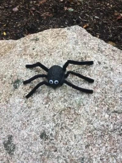 Halloween Walnut Shell Spider for Kids.