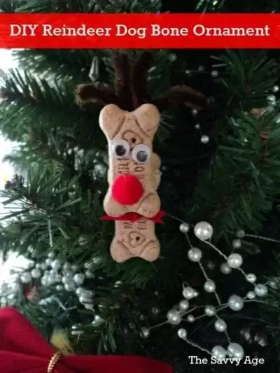 Fun DIY Reindeer craft. Make a reindeer ornament from dog bones to add a smile to your tree this season!