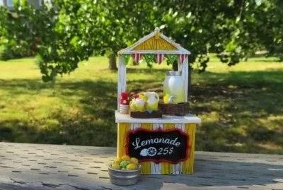 Lemonade stand for fundraising.
