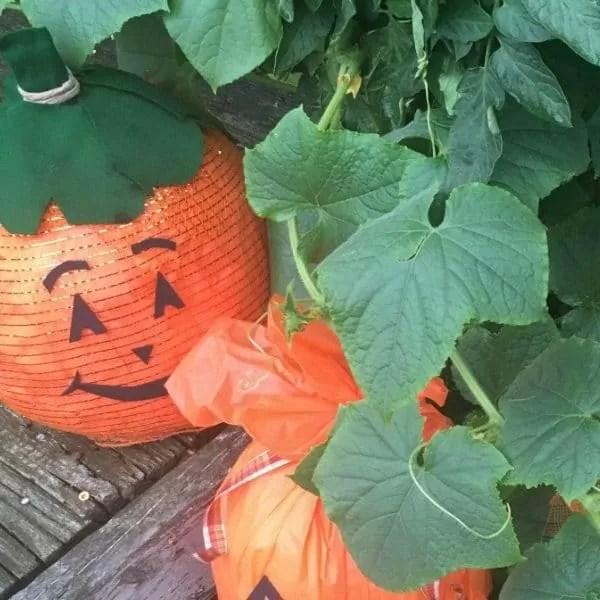 Make A Recycled Pumpkin! Halloween Craft For Kids