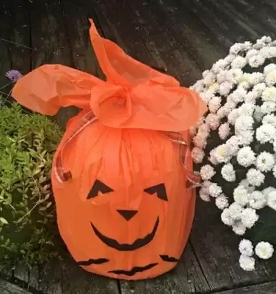 recycled pumpkin decorated with bats