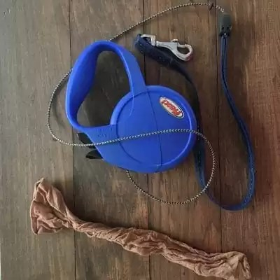 Nylons and flexi dog leash.
