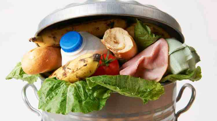 How to Not Let Food Waste Destroy Your Budget
