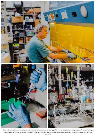 Savvy Updates, 6/3/2019: Hybrid Immune Cells, FDA Looking for Feedback, Vitamin D, Islet Cell Transplant Gets Orphan Status, Biohackers