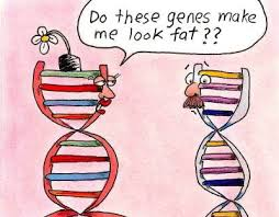 Savvy Food/Eating, 5/26/20: +/- of Low Carb Diets, Responses to Plant-based Eating, The FAT Gene!