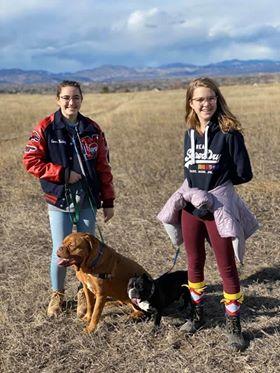 Savvy Pets, 7/24/20:  Joy & Ollie are Sheer Love Pups