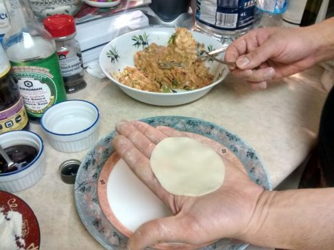 dumpling wrapper on open hand